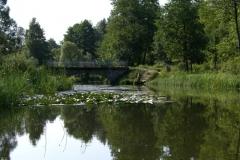 Rzeka Sawica